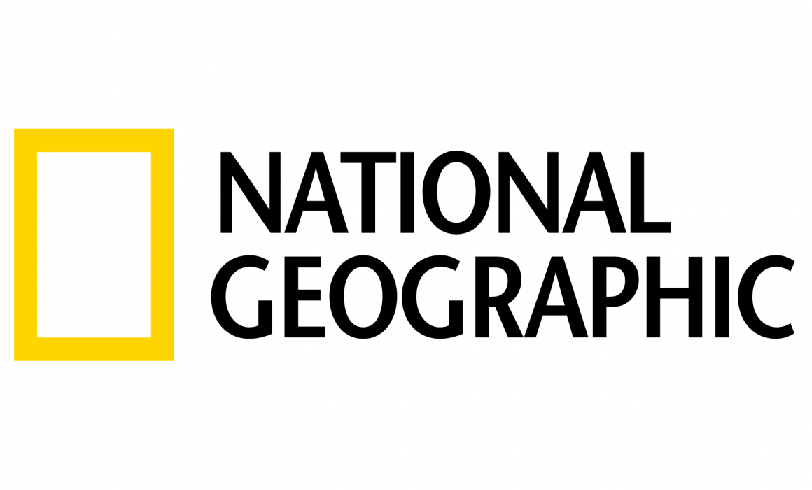 national-geographic-is-celebrating-new-year's-eve-on-instagram